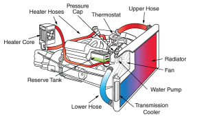 Cooling System Traverse City, MI 49686 - Typical car cooling system showing the radiator, heater, reserve tank, hoses and the location or the pressure cap and water pump.